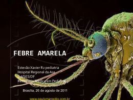 Febre Amarela - Paulo Roberto Margotto