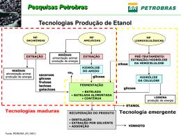 Pesquisas Petrobras