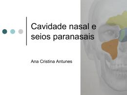 Cavidade nasal e seios paranasais