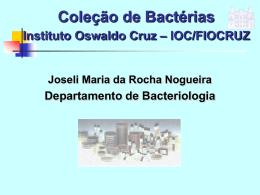 Coleção de Bactérias do Instituto Oswaldo Cruz