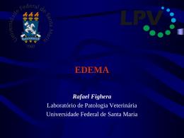O que é edema? - Rafael Fighera