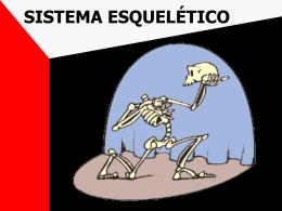 Sistemaesqueletico