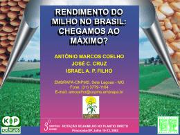 RENDIMENTO DO MILHO NO BRASIL: CHEGAMOS AO MÁXIMO...?