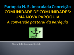 Doc100-Comunidade_de_Comunidades slides