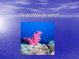 Os recifes de coral
