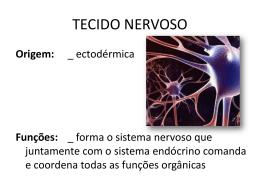 tecido nervoso Turma: M3S-RQ Professor: Frederico Moreira Lara