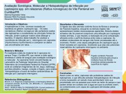 Avaliação Sorológica, Molecular e Histopatológica da