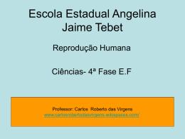 reprodução humana - carlosrobertodasvirgens - home