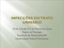 Infecções do trato urinário inferior