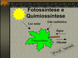 fotossintese quimiossintese