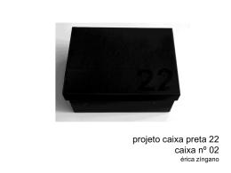 projeto caixa preta 22 caixa nº 02 érica zíngano