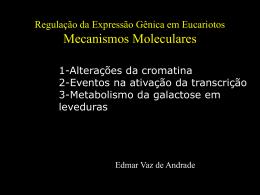 Mecanismos Moleculares de Regulação em Organismos Eucarióticos
