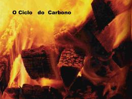 Ciclodocarbono - Profª Jaqueline Della Torre Martins