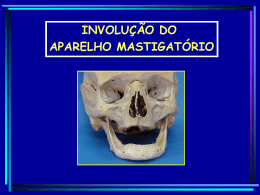 Anatomia do Desdentado 8,2 MB