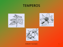tempero 2 - WordPress.com
