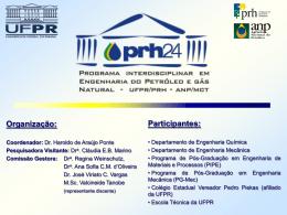 Programa Interdisciplinar em Engenharia de Petróleo e Gás Natural