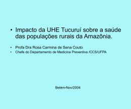 Impacto da UHE Tucuruí sobre a saúde das populações rurais da