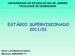 Apresentação Lara Medeiros Sabino - Frontal Engenharia / Engevix