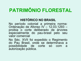 PATRIMÔNIO FLORESTAL