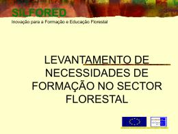 Prestadores de Serviços à floresta
