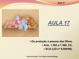 Aula 17 - Professora Mestra Clarissa Bottega