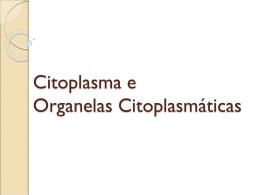 aula citoplasma e organelas