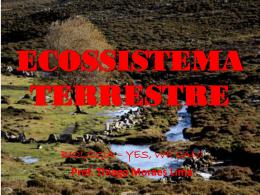 Ecossistema Terrestre 1ºs anos EM - março/2013