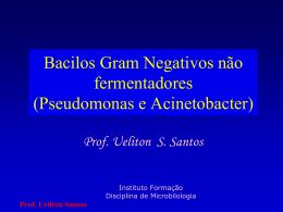 08-47-43-bgnnf - Instituto Formação