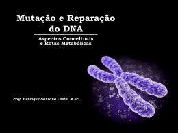 Mutação e Reparo