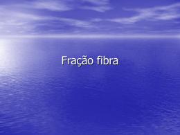Fração fibra