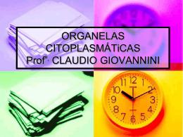ORGANELAS CITOPLASMÁTICAS (cont.) Profa. Erica