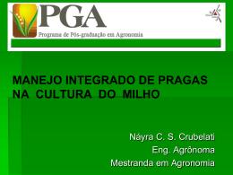 manejo integrado de pragas na cultura do milho