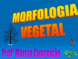 Morfologia-Vegetal-1