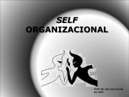 Self Organizacional