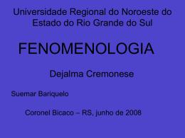 Fenomenologia - Capital Social Sul