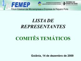 Representantes/Suplentes (Iniciativa Privada e Governo)