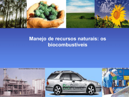 Manejo de recursos naturais – Os biocombustíveis