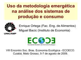 Uso da metodologia emergética na análise dos sistemas
