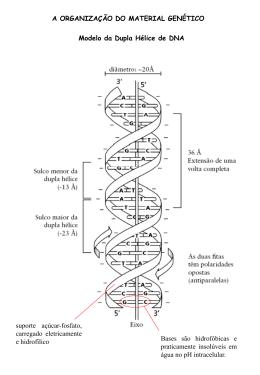 Aula_06 - Genética