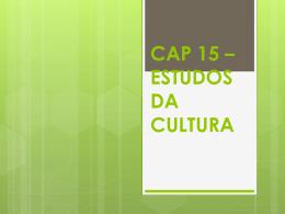 CAP 15 - ESTUDOS DA CULTURA