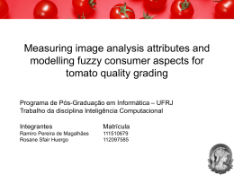 Measuring image analysis attributes and modelling fuzzy