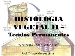 Histologia Vegetal II - 2ºs anos EM - 3º trimestre