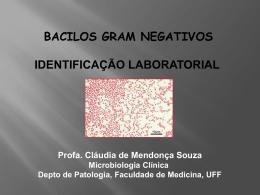 Enterobactérias e Bactérias Gram Negativas Não Fermentadoras