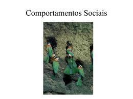 Comportamentos Sociais: cooperação e conflicto