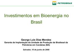 Investimentos em Bioenergia 01