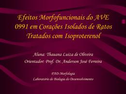 Efeitos Funcionais do AVE0991 em Corações Isolados de Ratos