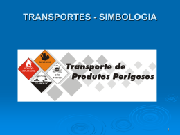 TRANSPORTE INTERNACIONAL - Work Space Leandro Petry Maciel
