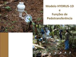 Modelo HYDRUS-1D e Funções de Pedotransferência