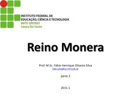 Reino Monera Prof. M.Sc. Fábio Henrique Oliveira Silva