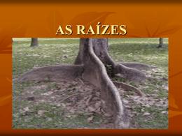 AS RAÍZES - Colégio Cor Jesu